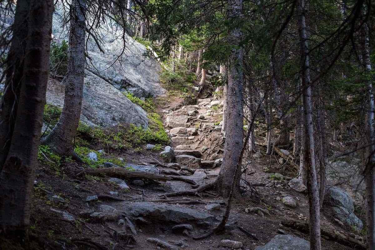 Trail Less Traveled